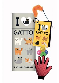 I love gatto